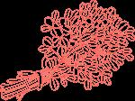 стрък смииндух в червено, който се съдържа в нашите хапчета за скоростно увеличаване на тестостерона и адндрогена.